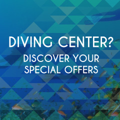 diving-center-quadrato-en.jpg